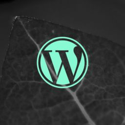 Wordpress Webdesign E Commerce thegem post thumb large - Blog